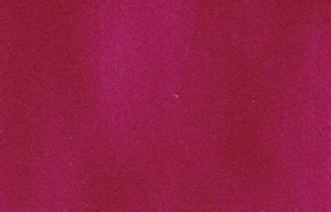 Dainel Original - Fuchsia