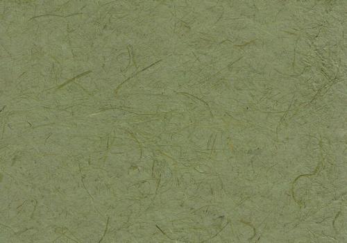 Gampi olivgrün