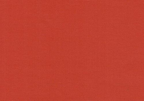 Buckram Rot