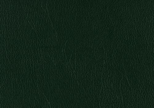 Skivertex Ubonga grün