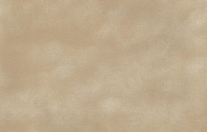 Dainel Original - Coquillage  50 x 70 cm