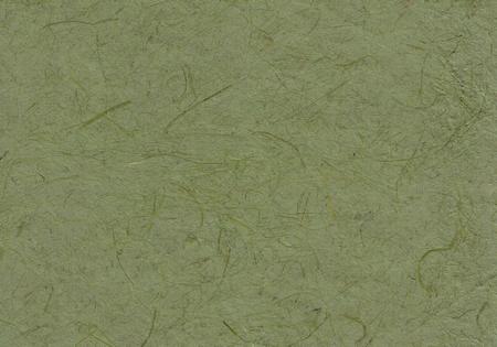 Gampi olijfgroen