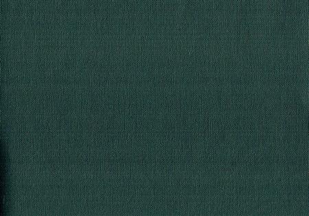 Buckram Blue Green