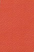Alran - Orange